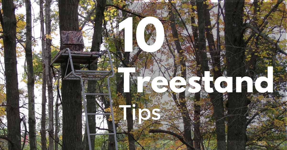 Ten Treestand Tips