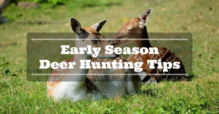 Early-Season Deer Hunting Tips