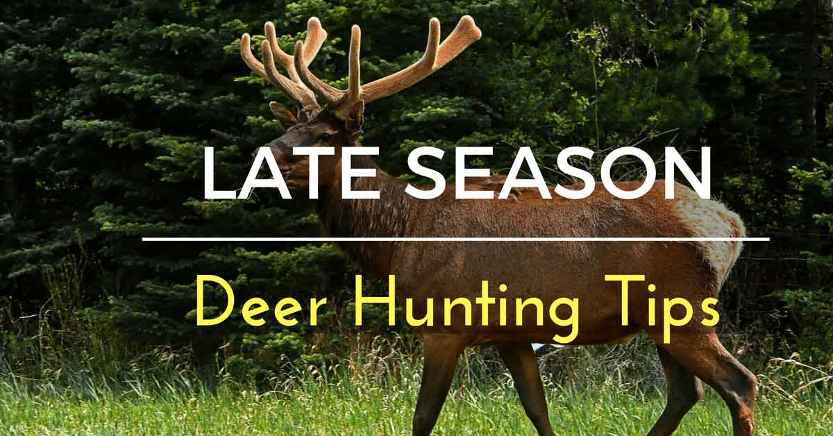 Late Season Deer Hunting Tips